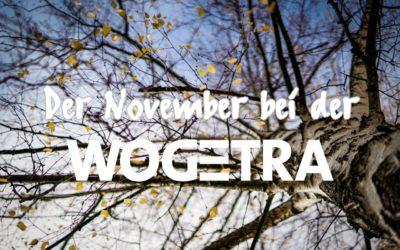 November 2020: Neuigkeiten von der WOGETRA